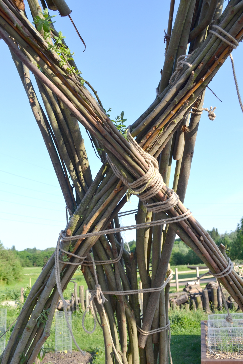 willow detail junction